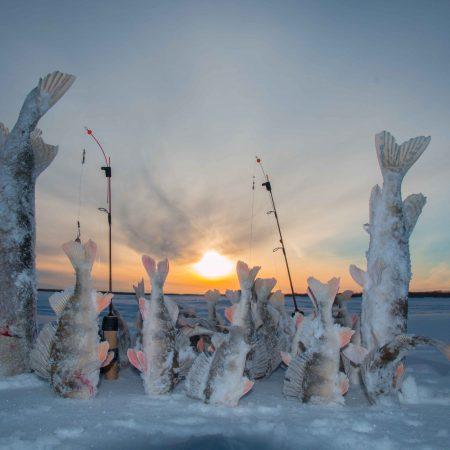 rybalka-zim